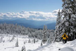 winter-wandelen-intowintersport