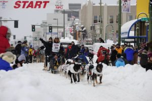 Iditarod-Trail-Sled-Dog-Race