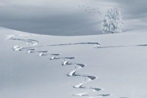 opening-skigebieden-intowintersport