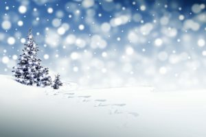 kerst in de sneeuw-intowintersport