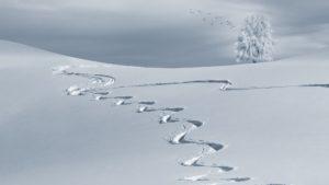 sale-wintersport